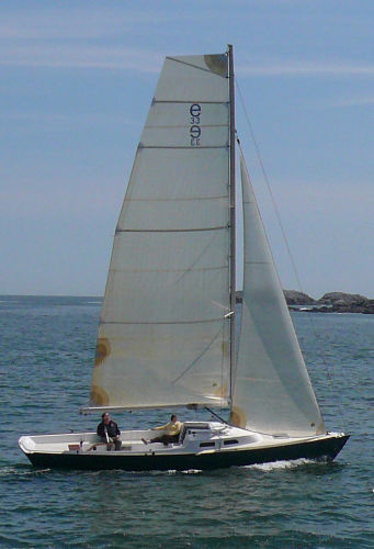 e Sailing Yachts e33 Photo 1