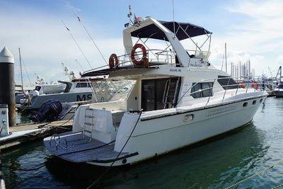 Seahawk Flybridge 480