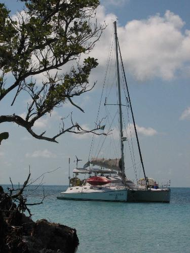 Island Spirit 401 Catamaran Rat Catcher
