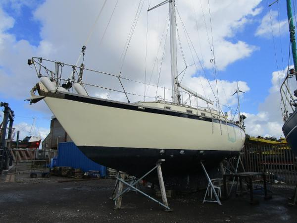 Custom Sea Trader 41