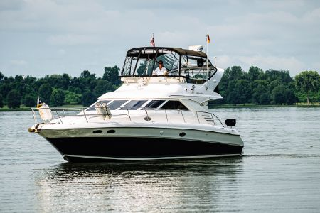 Sea Ray boats for sale - boats com