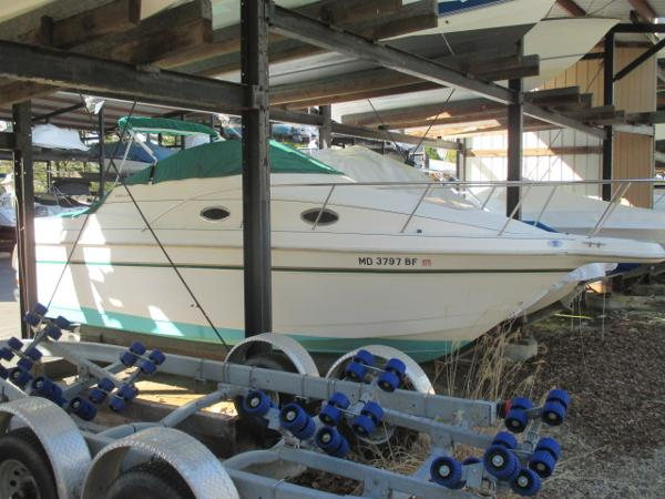 Donzi 255 Lxc Starboard Bow