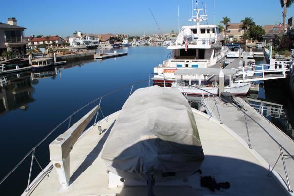 Bow View and Electric Davit System