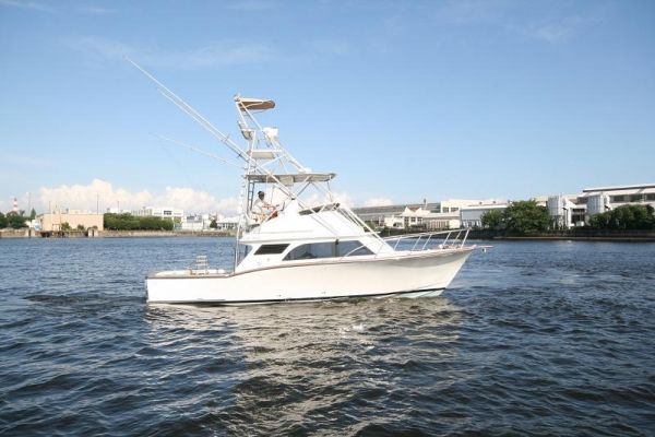 Liberty 36' by.C.J.Jannace Photo 1