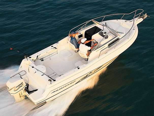 Aquasport 225 Explorer Outboard & Aluminum Trailer Manufacturer Provided Image