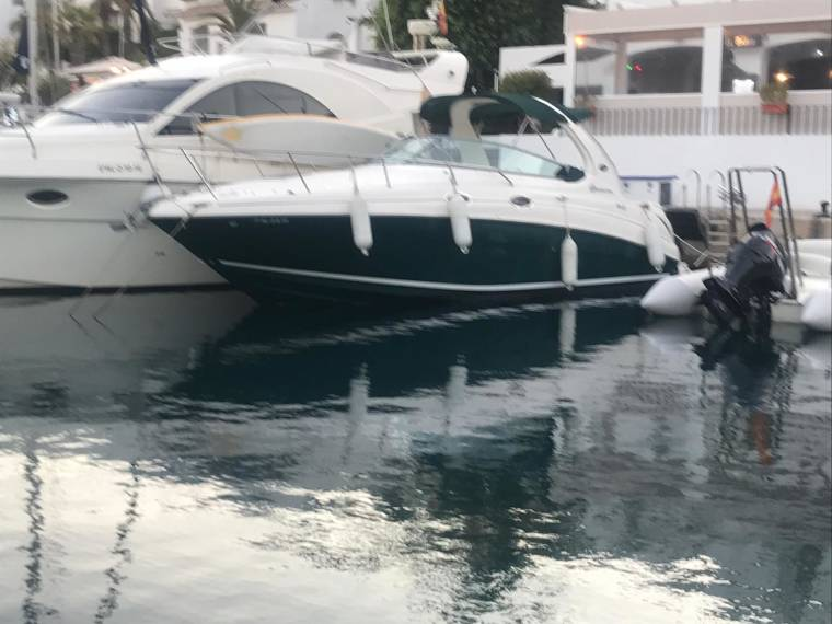 Sea Ray Sea Ray 315 Sundancer