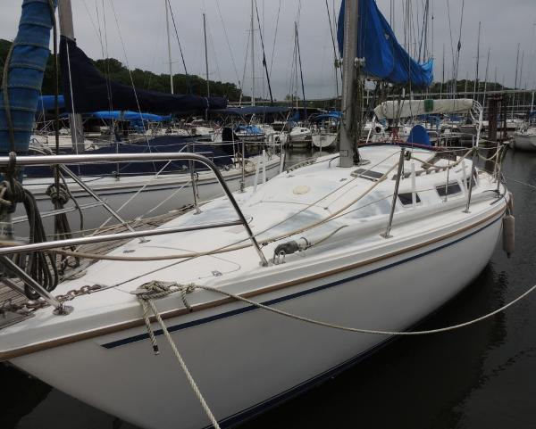 Catalina 30 Port Bow