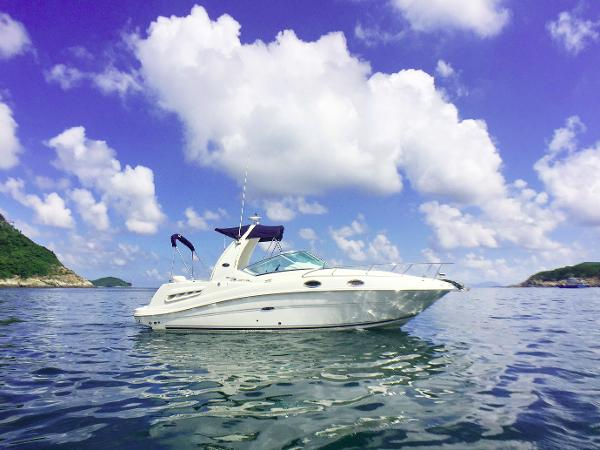 Sea Ray 260 Sundancer Motor Yacht Profile