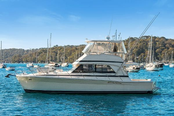 Riviera 43 Open Flybridge