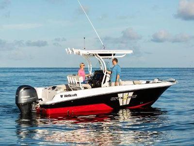 Wellcraft 222 FISH