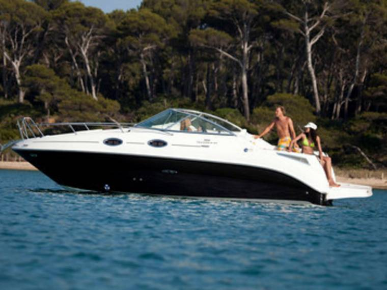 Sea Ray Sea RAy 255 Sundancer