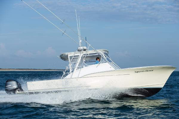 Shearline 30' Express