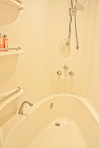 Master Stateroom Shower/Tub 2
