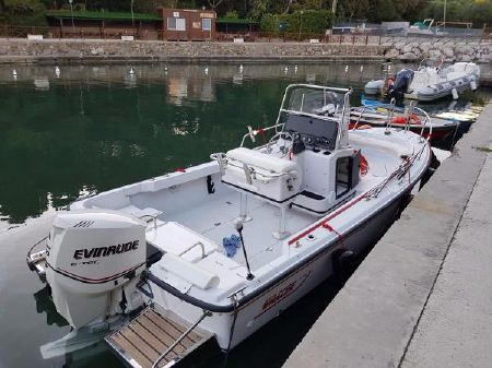 Boston Whaler 20 boats for sale - boats com