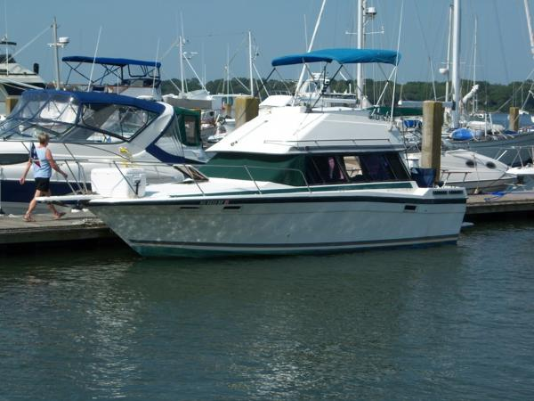 Bayliner Contessa