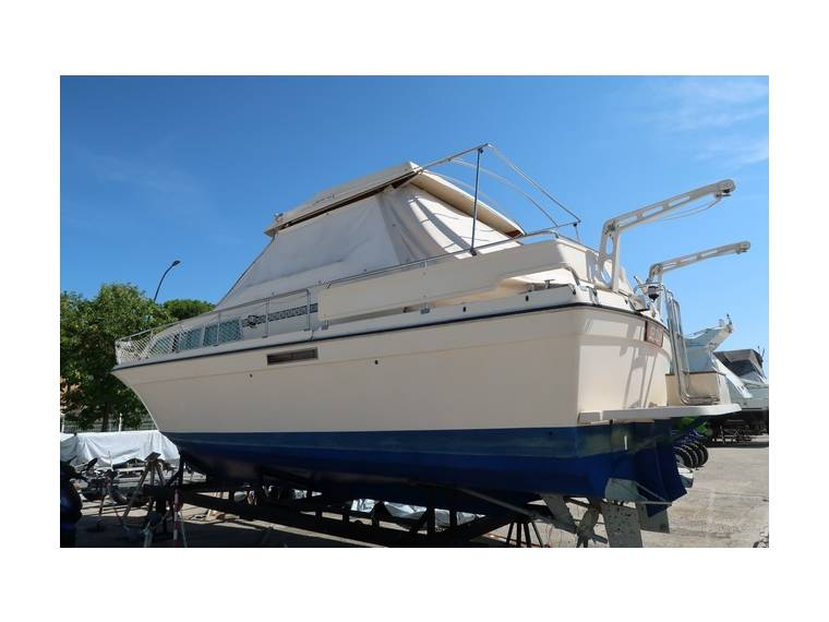 Storebro Storebro Royal Cruiser 31