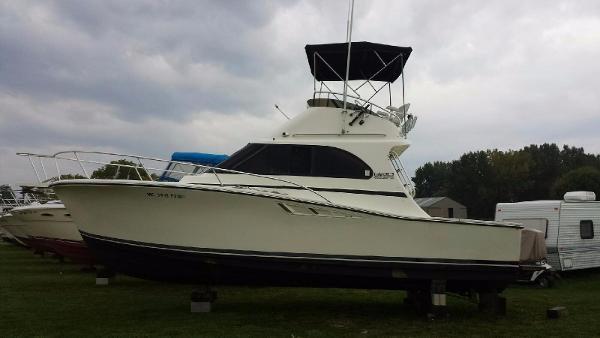 Luhrs 320 Convertible Port Side