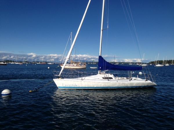 Carrera Boats 290