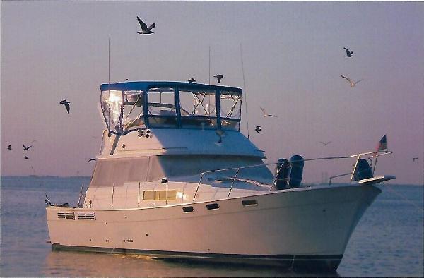 Bayliner 3870 Motoryacht Sun Set Cruise