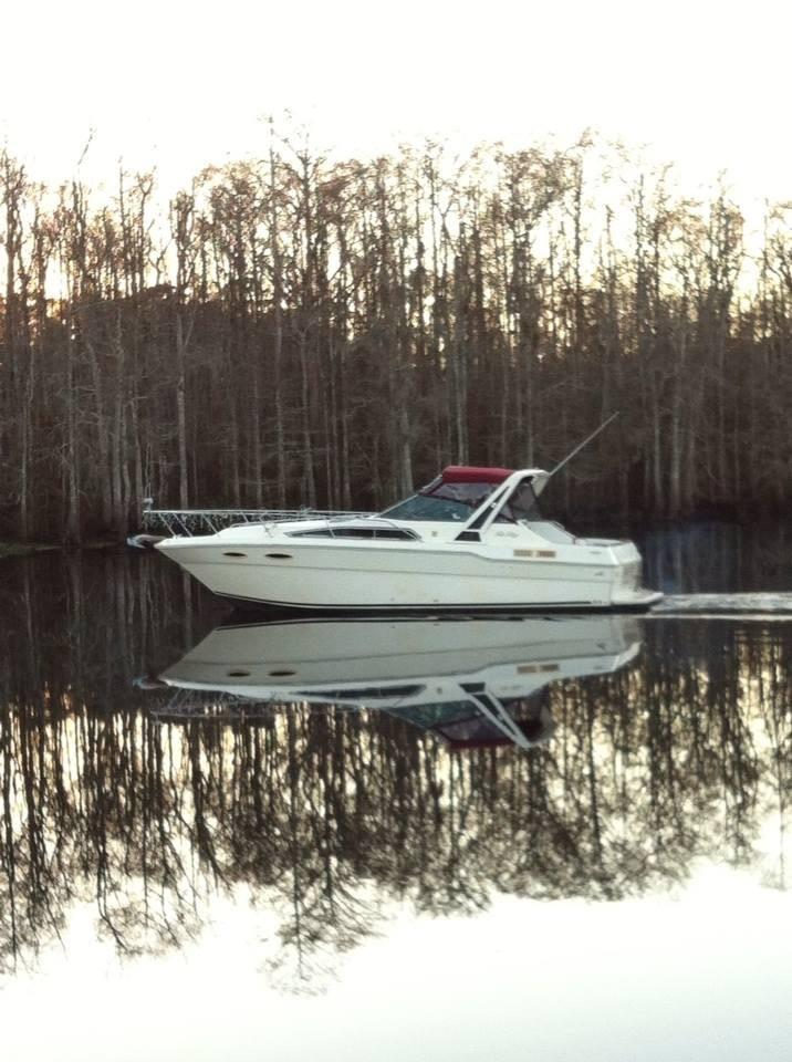 Sea Ray 300 Sundancer On The Water