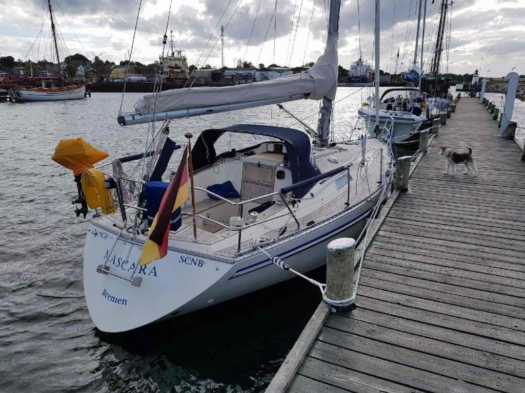 Comfort Yachts Comfortina 32