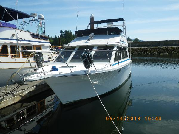 Olympic 33 Motor Yacht