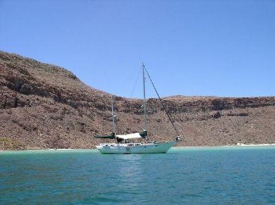 Island Trader 45