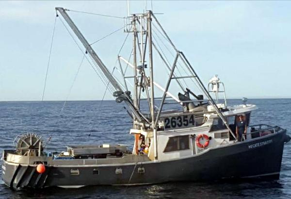 Tender Longliner, Packer, Trawler