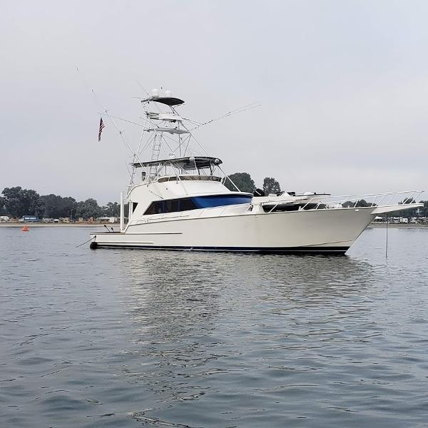 Striker 70 Sportsfisher