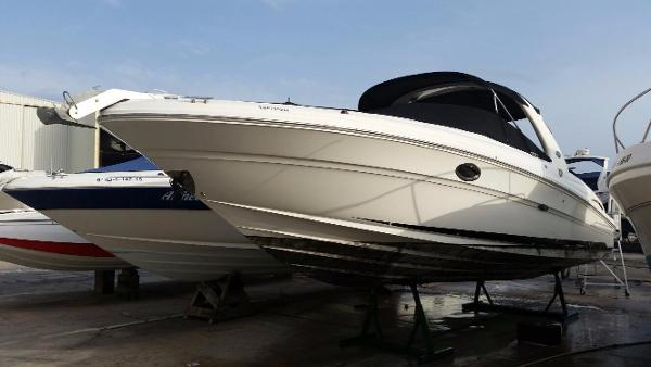 Sea Ray 290 Select EX SPONGE BOB