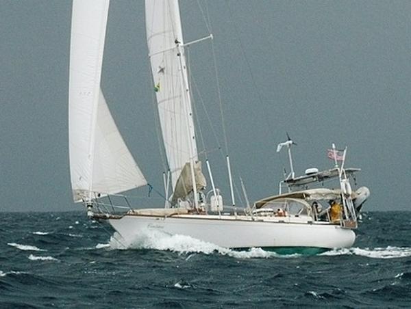 Shearwater 39