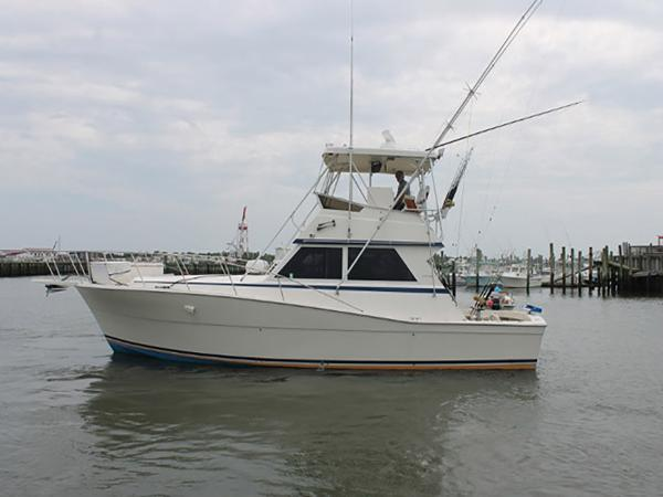 Viking 41 Conv Sport Fisher Profile