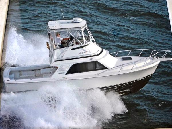 Blackfin  33 Convertible Profile