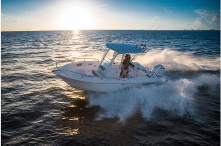 Everglades Boats 230 Cc