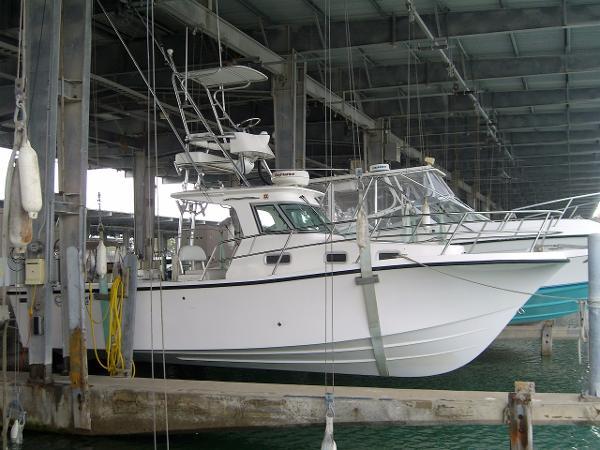 True World Marine TE288