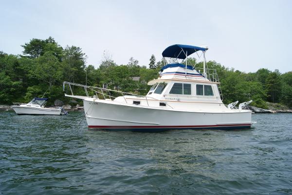 Blue Seas 31