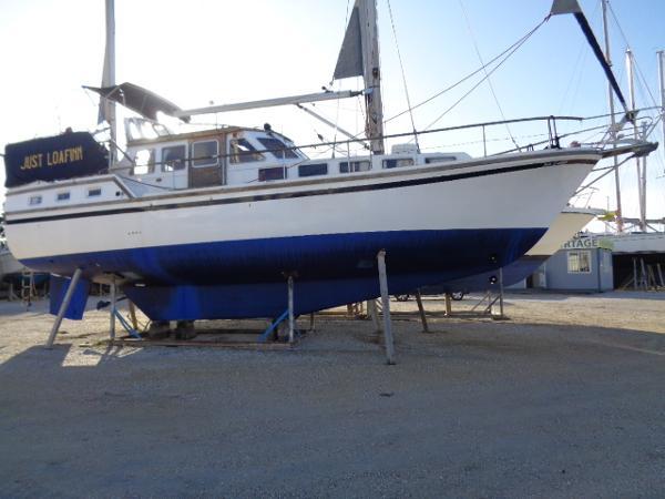 Seamaster SEAFINN 41