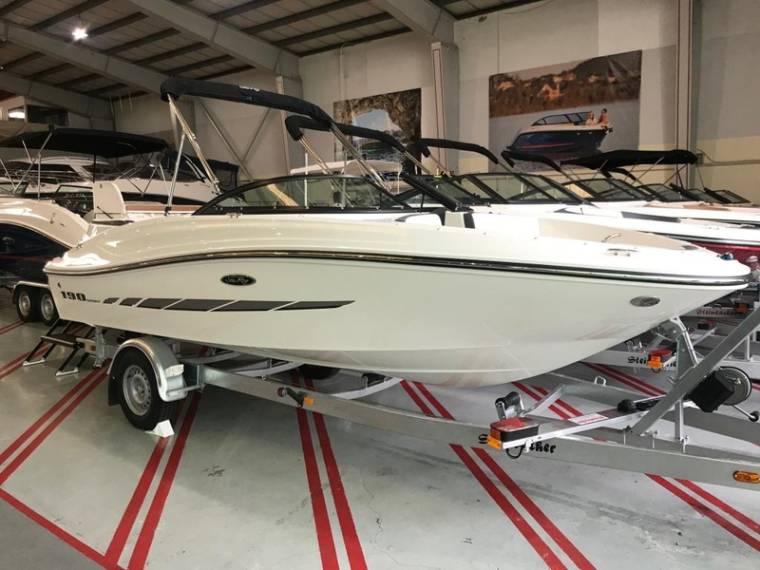 Sea Ray Sea Ray 190 Sport Motorboot