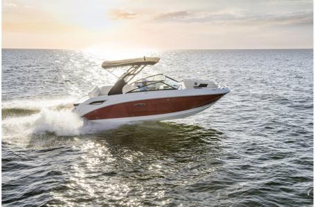 Sea Ray SDX 250