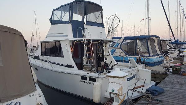 Baha Cruisers 34.5