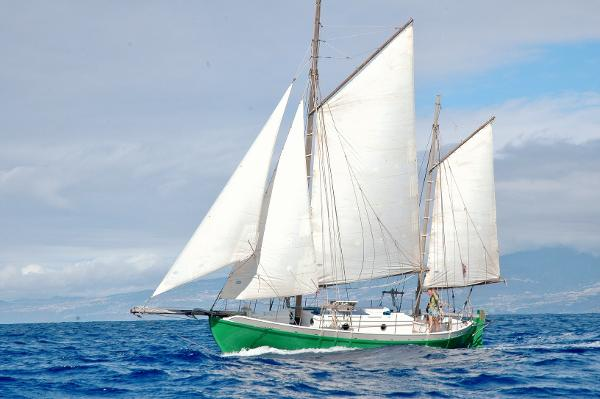 Colin Archer Gaff Rigged Ketch  - Chengal Wood Construction 37' Colin Archer Ketch For Sale
