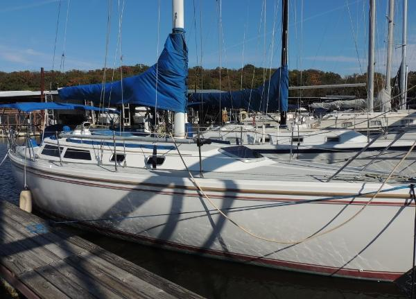 Catalina 36 Stb. Side