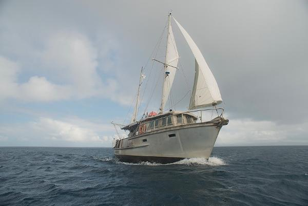 Peterson Erwin Haag Trawler Motorsailer