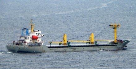 Custom Singledecker cargo vessel