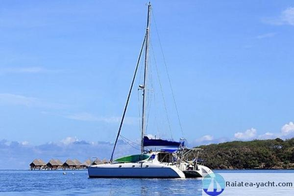 Charter Cats Wildcat 350