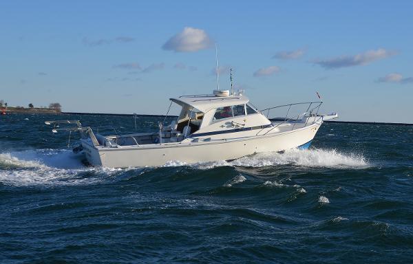Bertram Bahia Mar 31