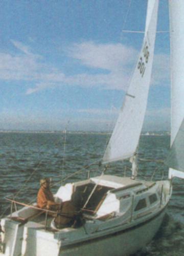 Laguna 26