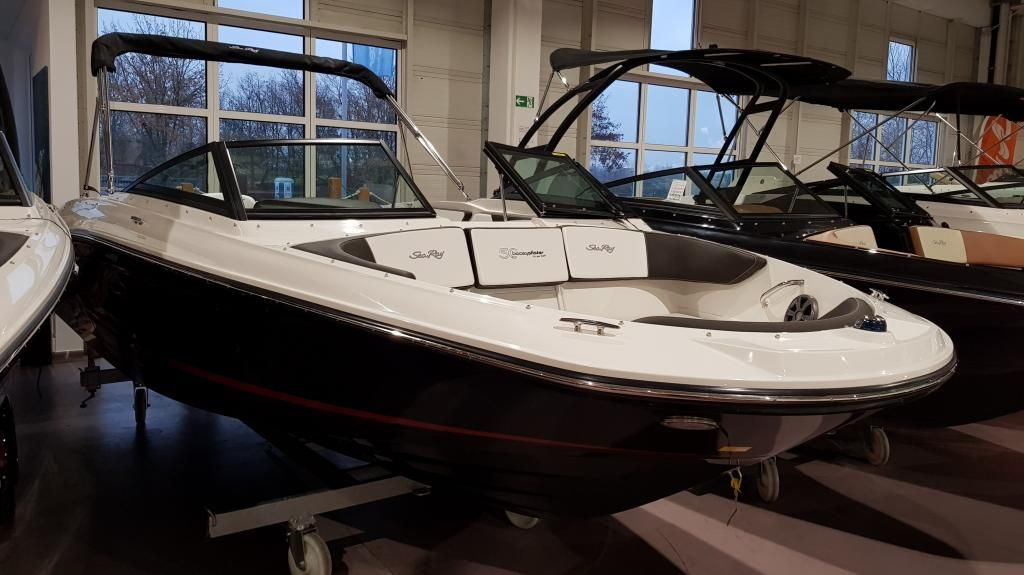 Sea Ray 210 SPXE Boote Pfister Edition auf Lager
