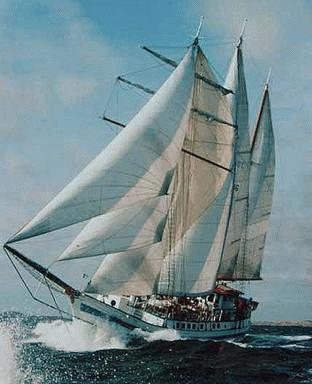 Custom cargo schooner