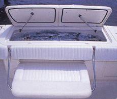Aft Fish Box